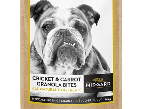 Midgard Insect Farms: Cricket-Based Pet Treat Product Development